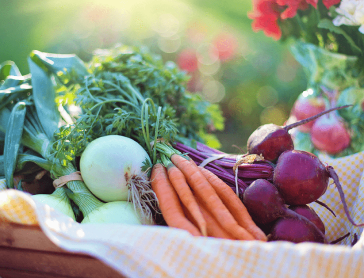 Alimentazione Sana: Ritrovare la Carica | Dott. Forloni Nutrizionista